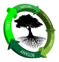 Ecology symbol vector image vector image