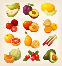 Set of colorful exotic fruit vector