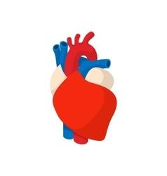 Human heart cartoon icon vector image