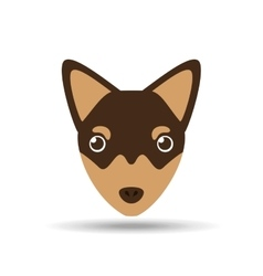 lovely head chihuahua puppy dog vector image vector image