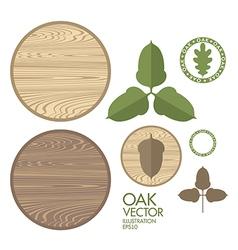 Oak Acorn Wood vector image