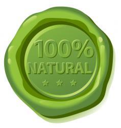 Seal natural vector