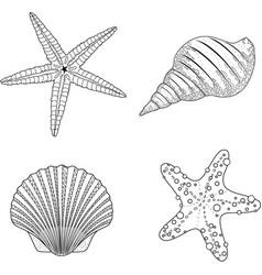 stylized shell zentangle doodle vector image