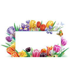 Card from arrangement with multicolor spring vector