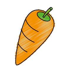 Carrot icon image vector