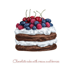 Chocolate cake with cream and berries vector