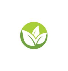 leaf ecology nature logo template vector image