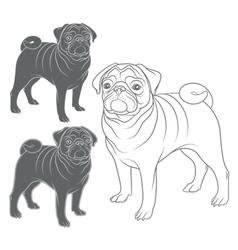 set images pug vector image