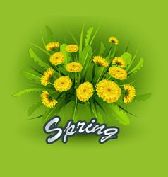 springtime on background vector image
