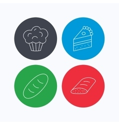 Sweet muffin cake and bread icons vector image