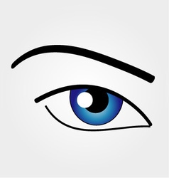 The Human Eye vector image