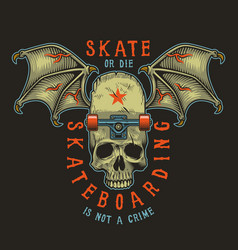 colour skateboarding print vector image