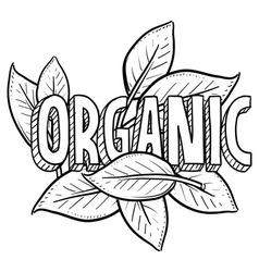Organic vector image vector image