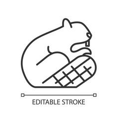 Beaver linear icon vector
