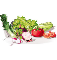 Composition with tomatoes onion lettuce leeks and vector