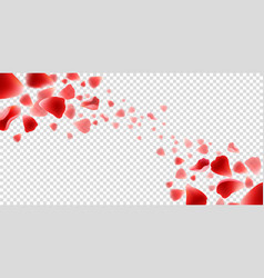 flying rose petals on transparent vector image