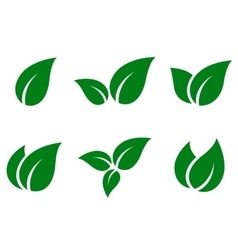 green leaves icon set vector image