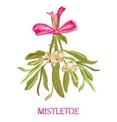 Hand drawn mistletoe vector