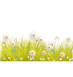Spring grass and flowers border on white vector