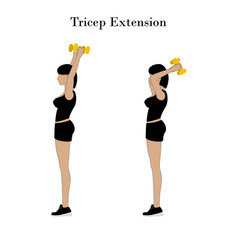 Tricep extension exercise vector