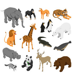 zoo animals isometric set vector image