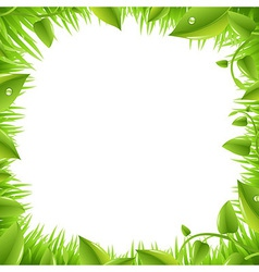 Border With Grass And Leafs vector image