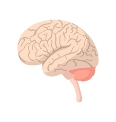 Human brain cartoon icon vector