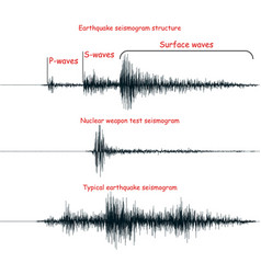 Seismogram set vector