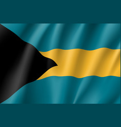 Flag bahamas realistic icon vector