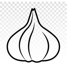Garlic allium sativum line art icon for apps vector