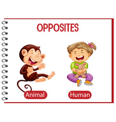 Opposite words with animal and human vector