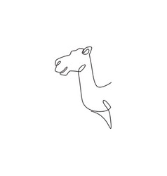 Single continuous line drawing head desert vector