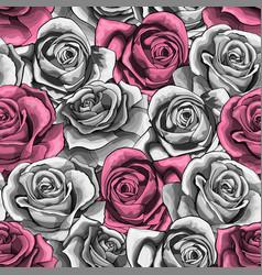 vintage hand drawn rose flower blossom vector image
