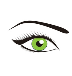 Beautiful green eyes vector image