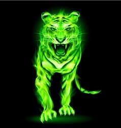 Fair tiger aggression Green 01 vector