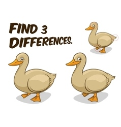 Find differences game duck vector image