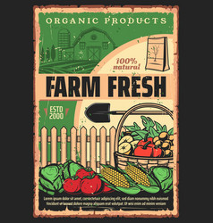 Organic farm products vegetable and fruit harvest vector