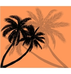 Palm trees with silhouettes of leaves vector