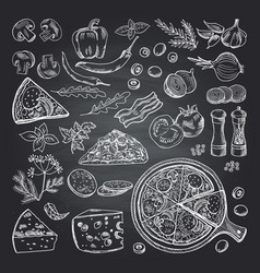 Pizza ingredients on black vector