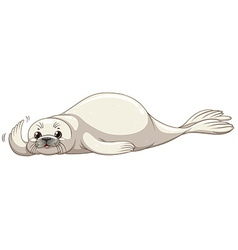 Seal with white skin vector