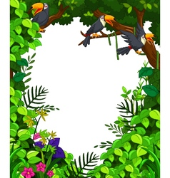 Toucan in green forest vector