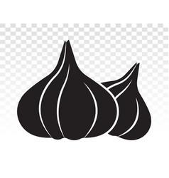 Two garlic allium sativum flat icon for apps vector