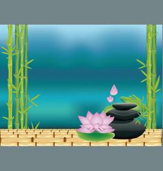 Zen stones with lotus vector