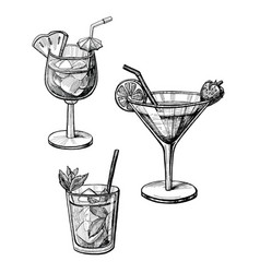 alcohol cocktail hand drawn set vector image