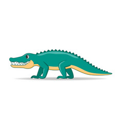 crocodille animal standing on a white background vector image
