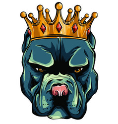 dog king in white background vector image
