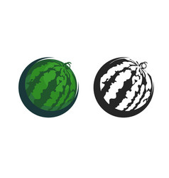 green icon of watermelon vector image