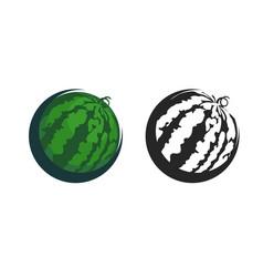 green icon of watermelon vector image