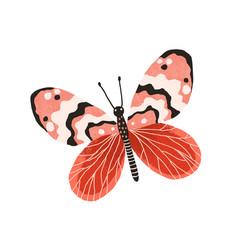 Hand drawn gorgeous butterfly with bright wings vector