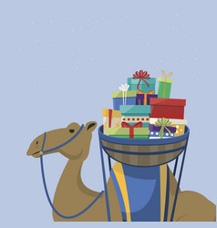 Happy epiphany day camel transporting gifts vector